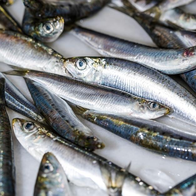 Nahaufnahme von frischen fischen auf eis Kostenlose Fotos