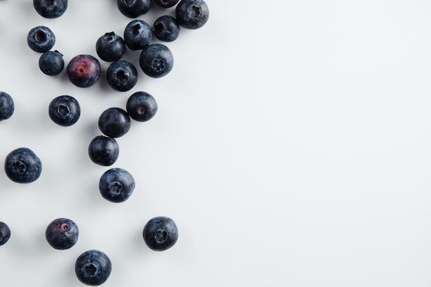 Nahaufnahme von heidelbeerfrüchten isoliert Premium Fotos
