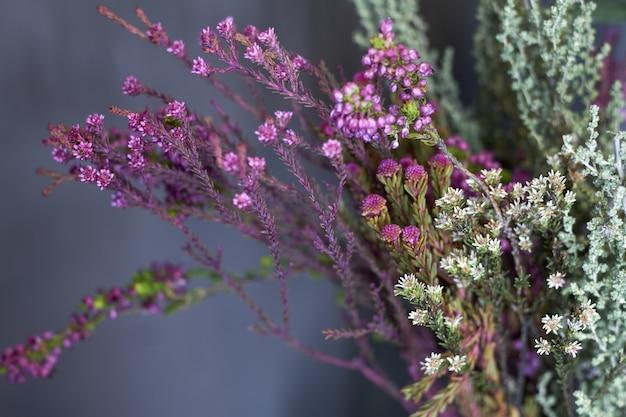 Nahaufnahmeblumenladenfenster mit exotischen blumen, selektiver fokus Premium Fotos