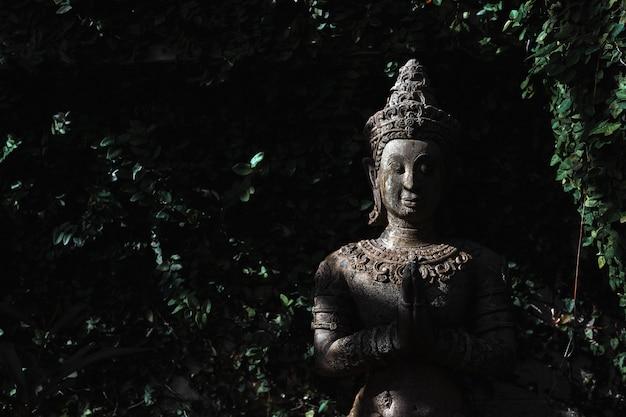 Nahaufnahmebuddhismus für statuen oder modelle des buddha-porträts Premium Fotos