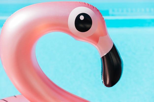 Nahaufnahmeflamingoschwimmring Kostenlose Fotos