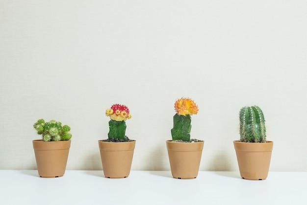 Nahaufnahmegruppe des kaktus im braunen topf für verzieren auf schreibtisch Premium Fotos