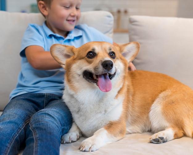 Nahaufnahmejunge, der familienhund streichelt Kostenlose Fotos