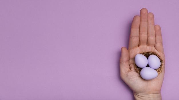 Nahaufnahmemann, der purpurrote eier hält Kostenlose Fotos