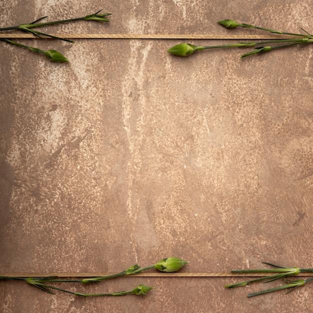Nahaufnahmesepiafeld mit kleinen gartennelkenstämmen Kostenlose Fotos