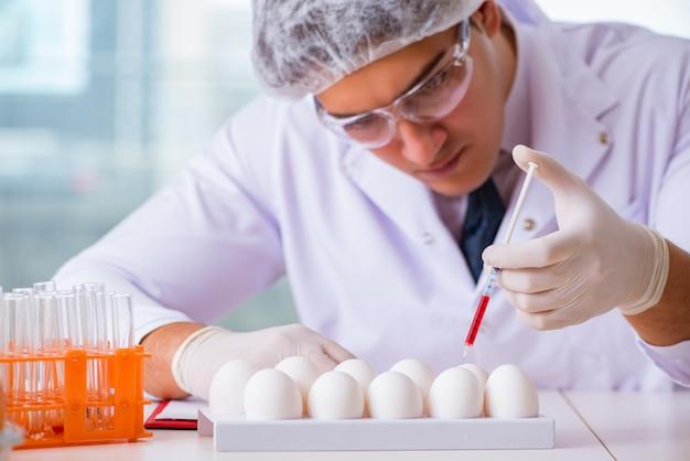 Nahrungsexperte, der nahrungsmittel im labor prüft Premium Fotos