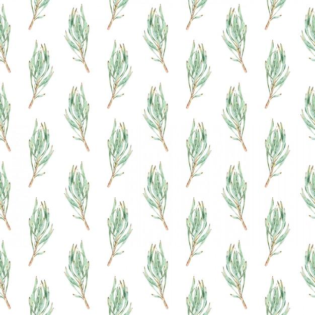Nahtloses muster des aquarells von grünen proteablättern. Premium Fotos