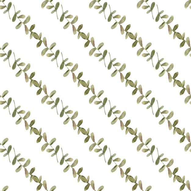 Nahtloses muster des eukalyptus mit niederlassungen Premium Fotos