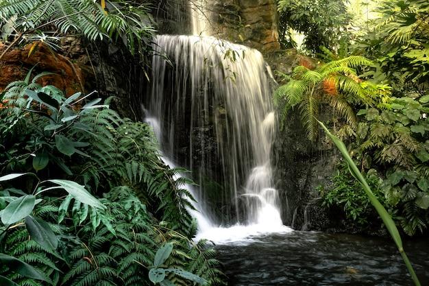 Natürliche dekoration des innenwasserfalls Premium Fotos