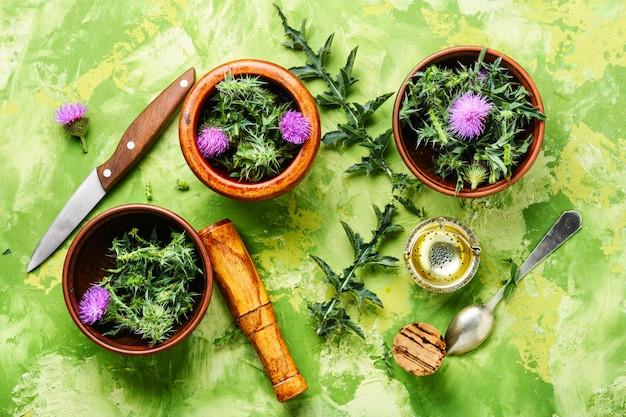 Natürliche kräutermedizin Premium Fotos