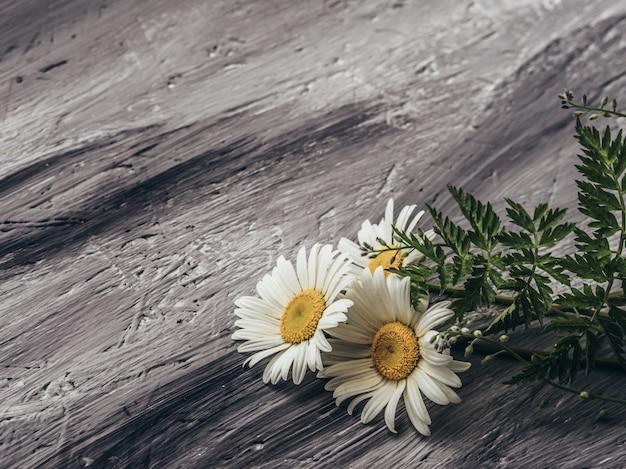 Natürliche sommerblumen auf grauem hintergrund. Premium Fotos