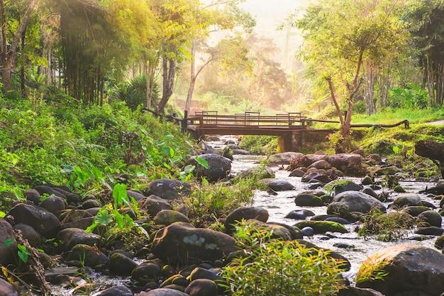 Natur Premium Fotos