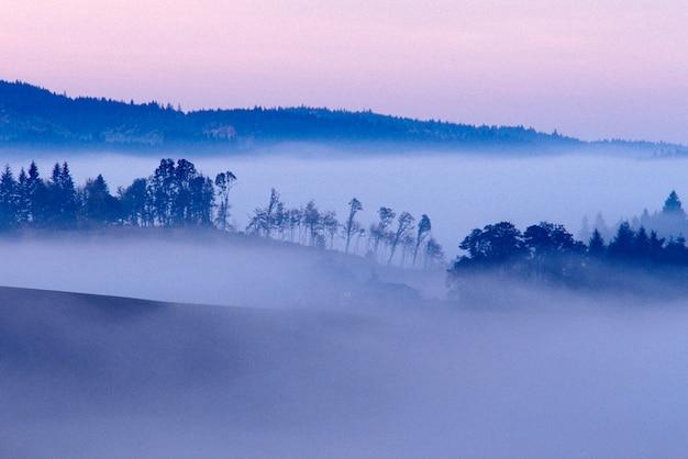 Nebel im tal, willamette valley, portland, oregon Premium Fotos