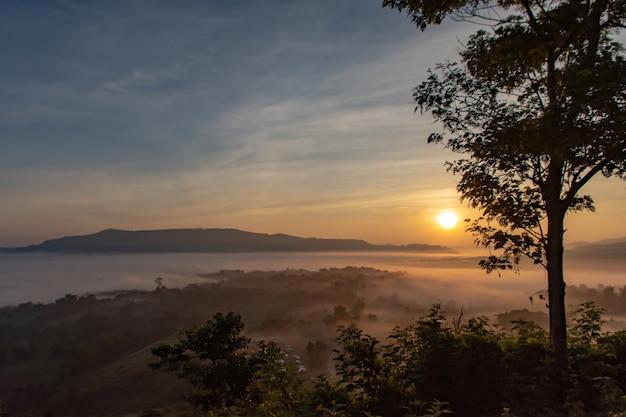 Nebel und sonne morgen nach berg. Premium Fotos