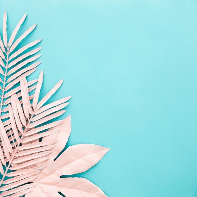 Nette quadratische zusammensetzung des rosas verlässt auf blauem hintergrund Kostenlose Fotos