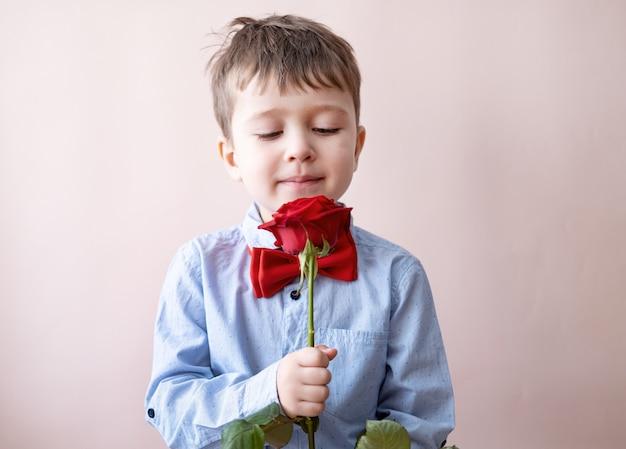 Netter kleiner kaukasischer junge in fliege mit roter herzgeschenkbox halten rose auf rosa hintergrund. valentinstag. Premium Fotos