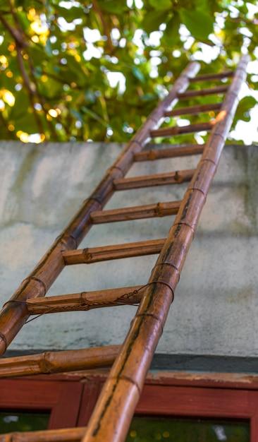 Niedrige winkelsicht der bambusleiter, weise zum himmel. Premium Fotos