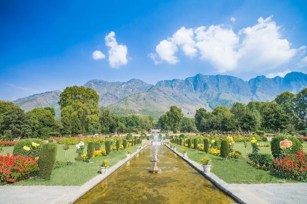Nishat bagh ist ein terrassierter mughal-garten am dal lake, srinagar Premium Fotos