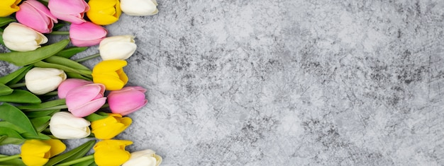 Nizza banner für den header ihrer website mit tulpen auf einem stein gemacht Kostenlose Fotos