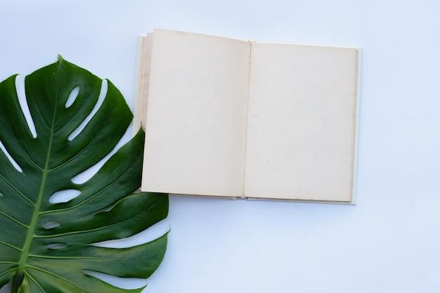 Notizbuch mit grünen blättern auf weißer wand Premium Fotos