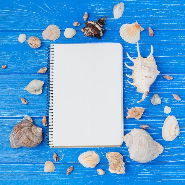 Notizbuch mit muschelsammlung Kostenlose Fotos