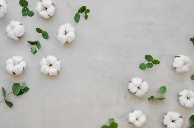 Oben ansicht baumwollblumenrahmen Kostenlose Fotos