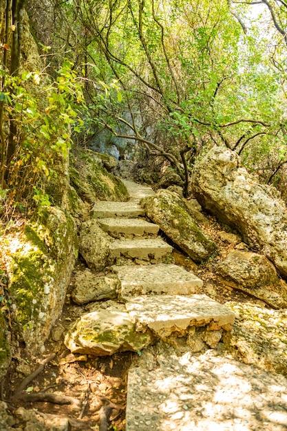 Öffentlicher park des kursunlu wasserfalls nahe antalya stadt in der türkei, schöner naturreisehintergrund, herbstzeit Premium Fotos