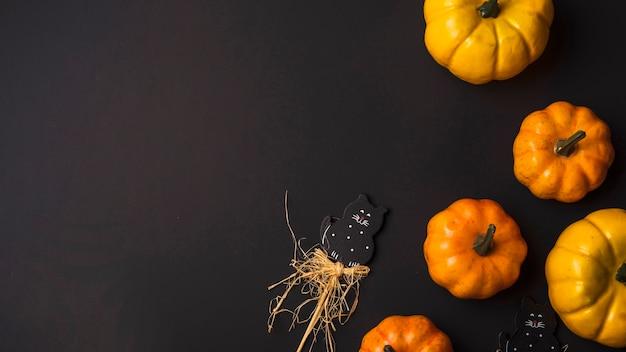 Orange frische kürbisse und spielzeug katze Kostenlose Fotos