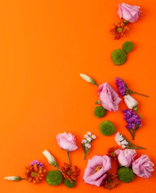 Orange hintergrund mit schönen blumen Kostenlose Fotos
