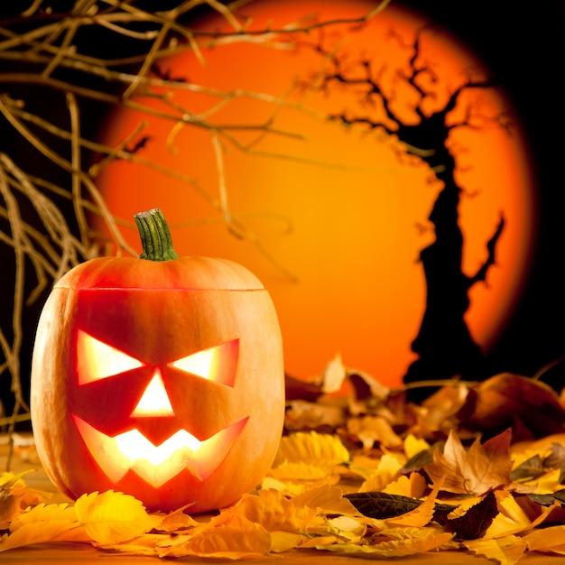Orange kürbis halloweens auf herbstlaub Premium Fotos