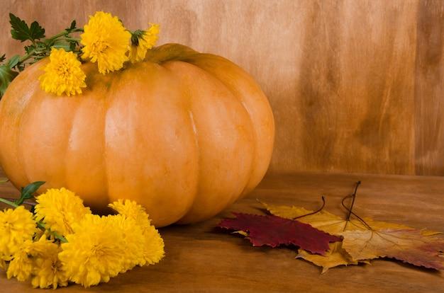 Orange kürbis mit gelben blumen und ahornblättern Premium Fotos