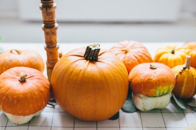 Orange kürbise auf weißer tabelle im café Premium Fotos