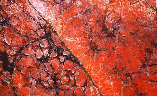Orange ölgemäldebeschaffenheitsschwarzlinien marmorieren abstrakten hintergrund. Premium Fotos