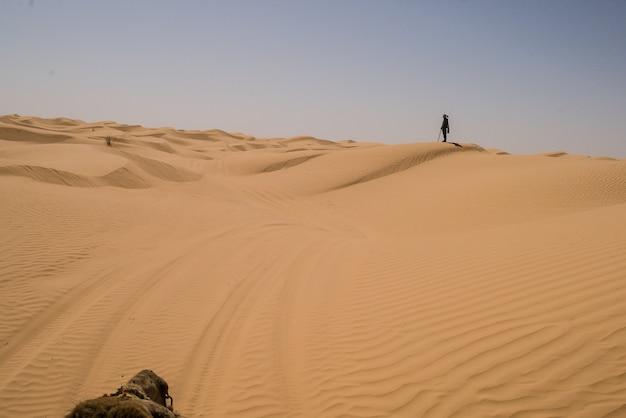 Orange sanddünen in der sahara-wüste Premium Fotos