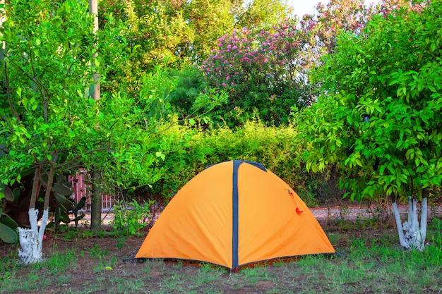 Orange zelt unter orange campingbäumen Premium Fotos