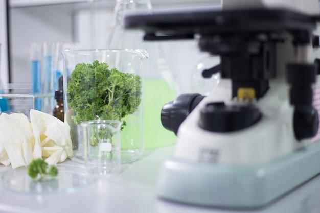 Organisches gemüse im wissenschaftsraum Premium Fotos