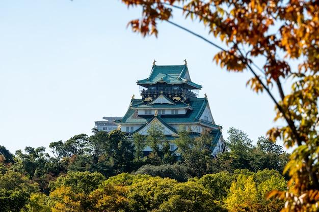 Osaka castle in osaka mit herbstlaub. japan-reisekonzept Premium Fotos