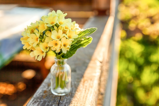 Ostern-konzept. blumenstrauß der primel-primel mit gelben blumen im glasvase unter weichem sonnenlicht Premium Fotos
