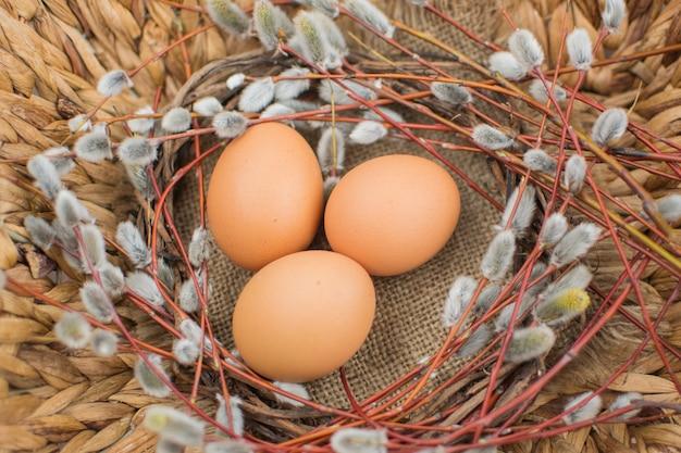 Osterstilleben. weidenzweige mit eiern. ostereier. eier für ostern Premium Fotos