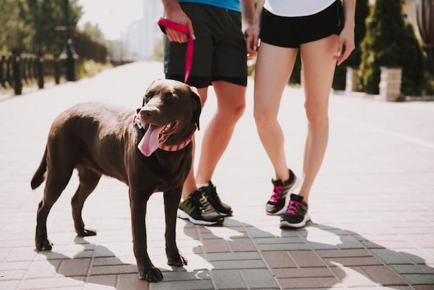 Paar athleten mit hund auf der stadtpromenade Premium Fotos