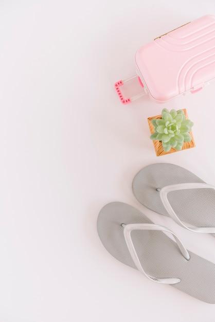 Paar flip-flops; saftige anlage und kleine gepäcktasche auf weißem hintergrund Kostenlose Fotos