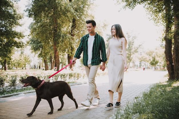 Paar geht mit ihrem hund im sommer-park spazieren Premium Fotos