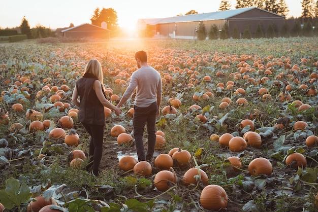 Paare, die auf dem kürbisgebiet stehen Kostenlose Fotos