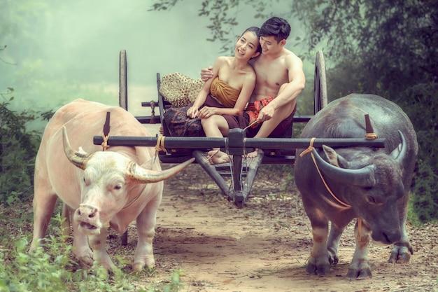 Paare im alten thailändischen kostüm sitzen auf einem büffelkarren. Premium Fotos