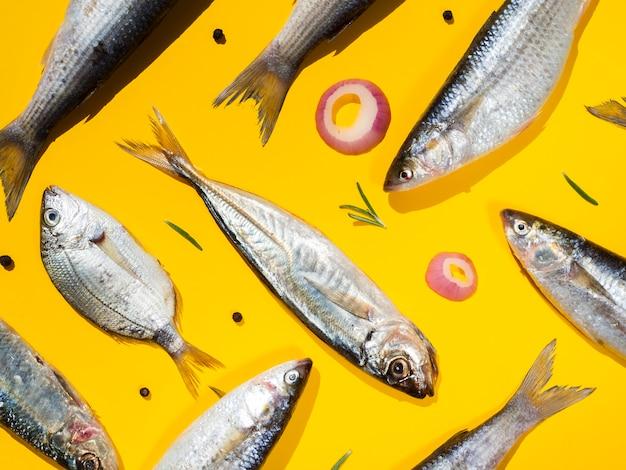 Paare von frischen fischen mit gelbem hintergrund Kostenlose Fotos