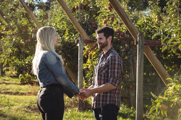 Paarhändchenhalten und stellung im apfelgarten Kostenlose Fotos