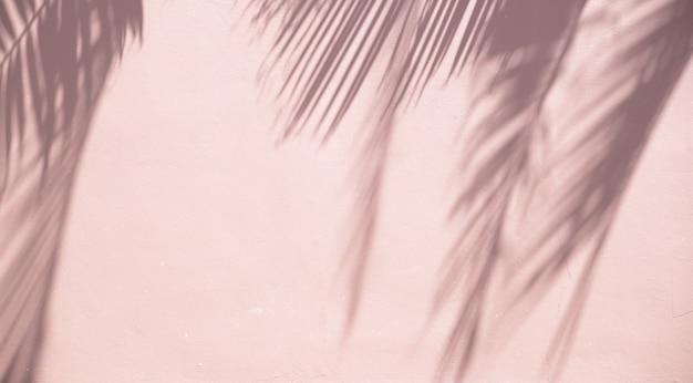 Palm hinterlässt schatten auf einer sandigen wand Kostenlose Fotos