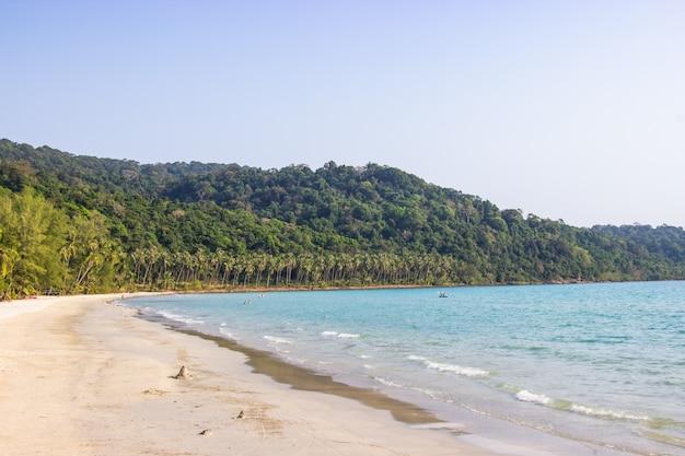 Palmen und der himmel, die auf weißem sand hell sind, setzen an koh kood insel trat, thailand ao phrao-bereich auf den strand. Premium Fotos