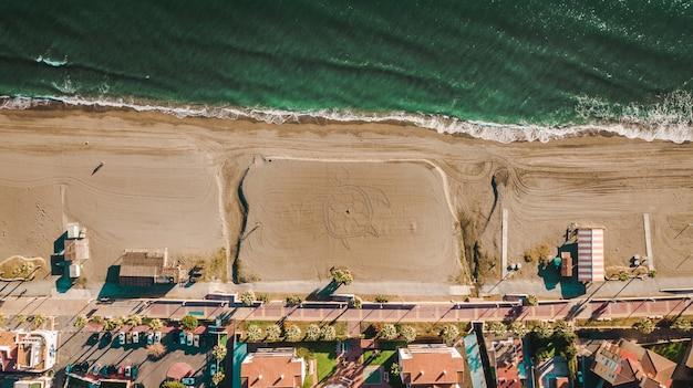 Palmen und sandstrand mit einer schildkröte im sand in malaga, andalusien region von spanien. Premium Fotos