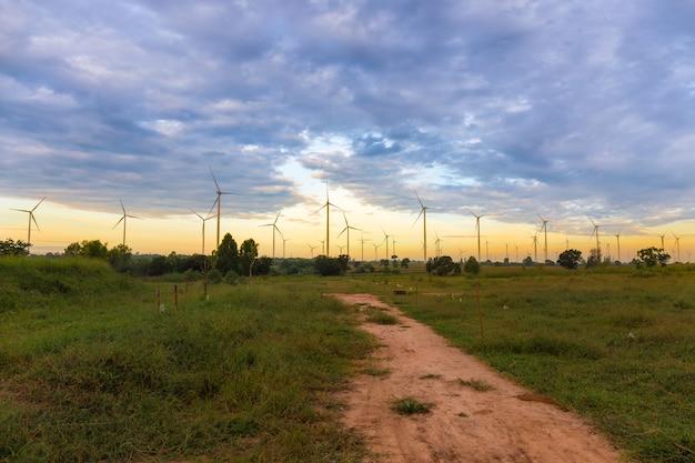 Panoramisch von eco-energie, von windkraftanlage auf dem feld des grünen grases und von mais über sonnenunterganghintergrund Premium Fotos